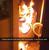Смешна снимка kofti pyrvo prane